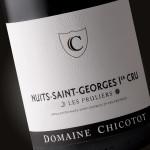 "Nuits Saint georges 1er cru ""Les Pruliers"""