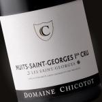 Nuits Saint Georges 1er cru «Les Saint Georges»