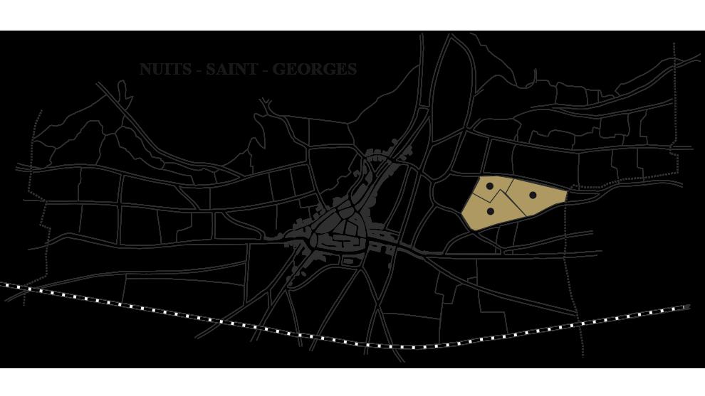 nuits-saint-georges-vieilles-vignes-carte